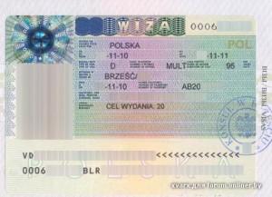 wiza polska